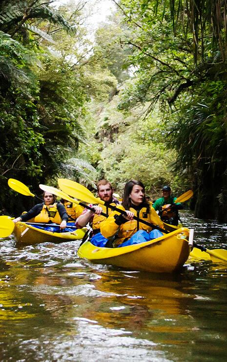 Visit and Explore South Waikato - New Zealand